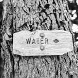 Water Efficiency in LEED v4